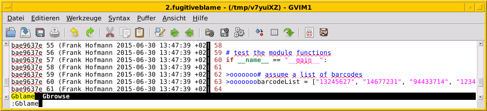 Finding out who changed which line of code using `:Gblame`