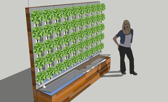25 Aquaponic Farms In 25 Schools