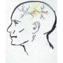 Synapse logo med
