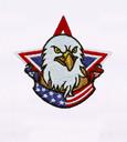 Us_pride_bald_eagle_embroidery_design