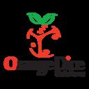 Logo-orangedice-512-512
