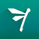 Flapper_-_logo