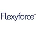 Logo_flexyforce-software