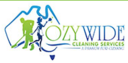 Ozywide_cleaning_image