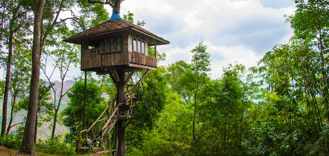 5 ways to build a business empire like treehouse master pete