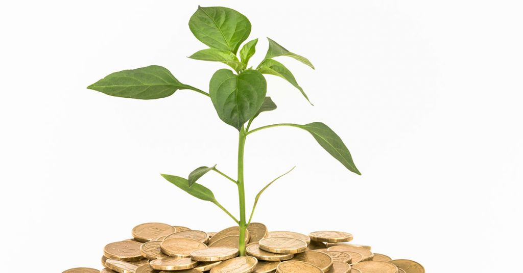 Retirement investment options for IRAs, Roth IRAs and 401(k)s