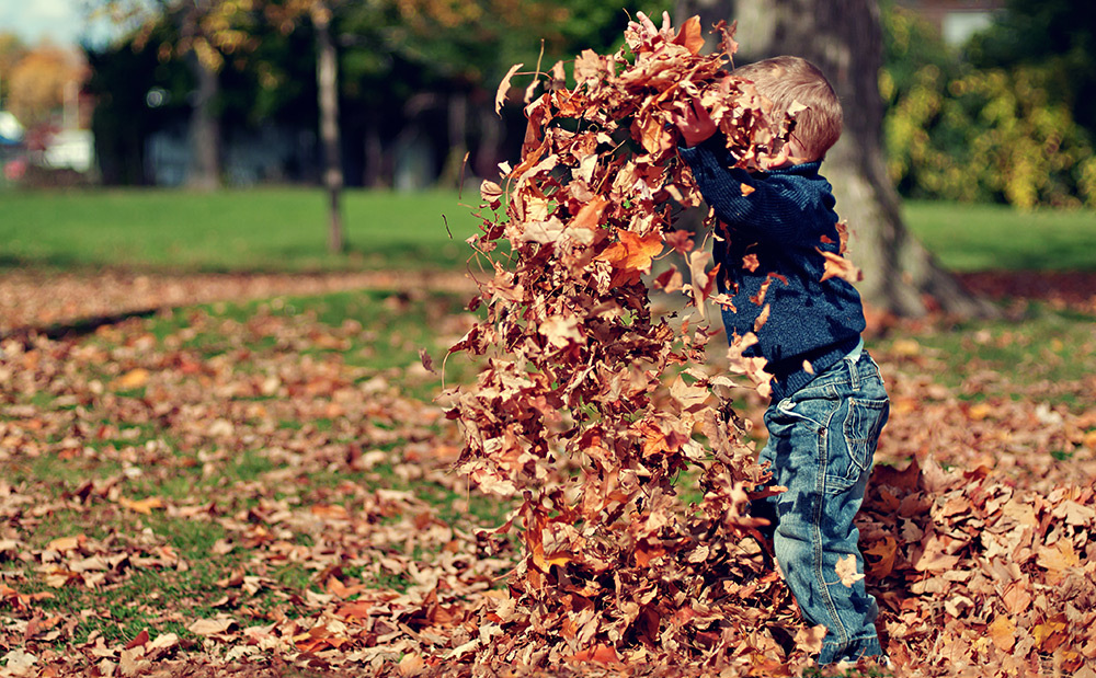 Fall Activities that Aren't Pumpkin Picking