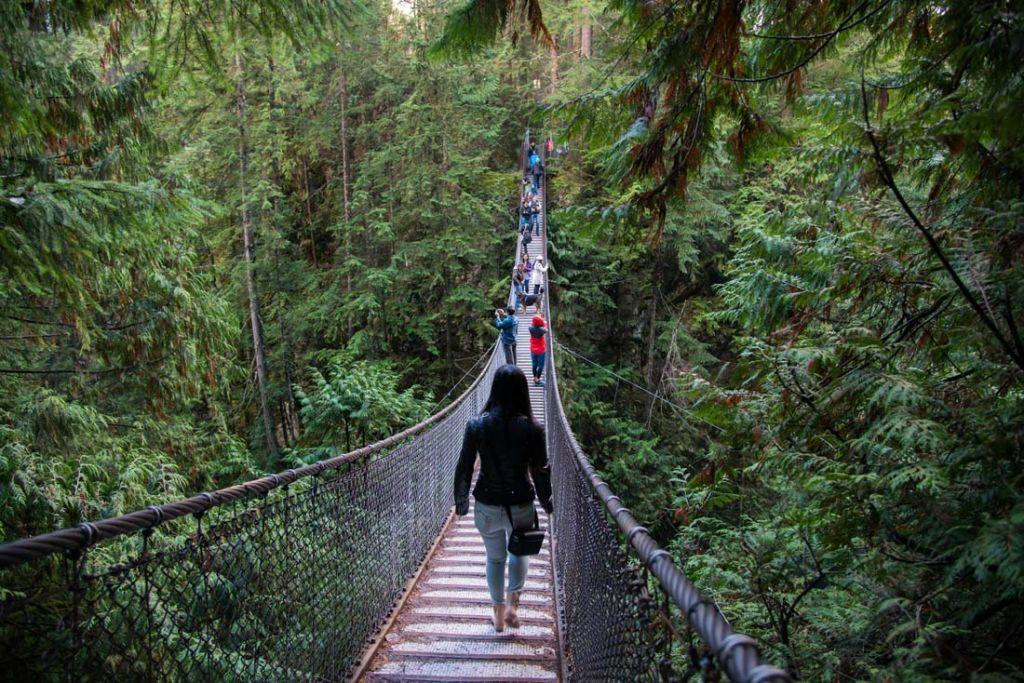 Olha so a ponte, da um frio na barriga quando ela balanca!