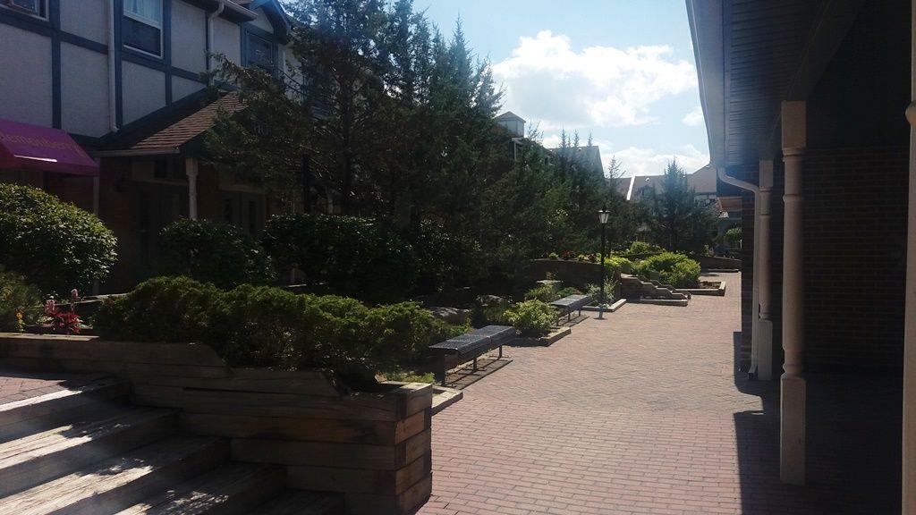 campus + vila4