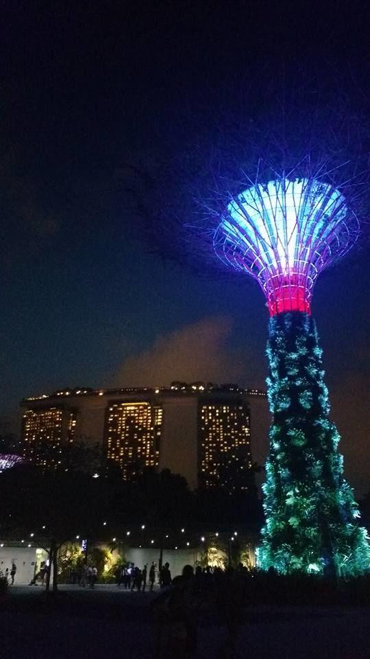 Gardens by the Bay em primeiro plano. Ao fundo, o complexo Marina Bay Sands, com seus 207 m de altura (detalhe: tem uma piscina lá, a 200 metros de altura - a mais alta do mundo!).