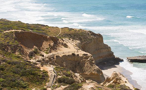 5 passeios incríveis para aproveitar San Diego