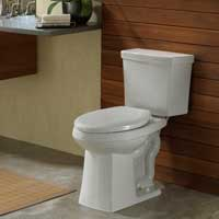 Danze high-efficiency toilet