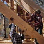 Log home construction advice
