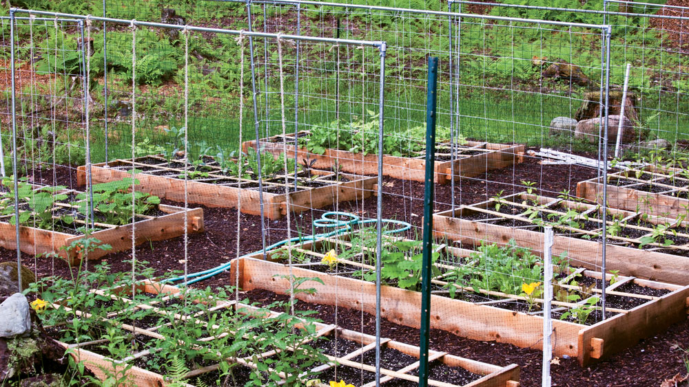 Square Foot Gardening for Small Spaces