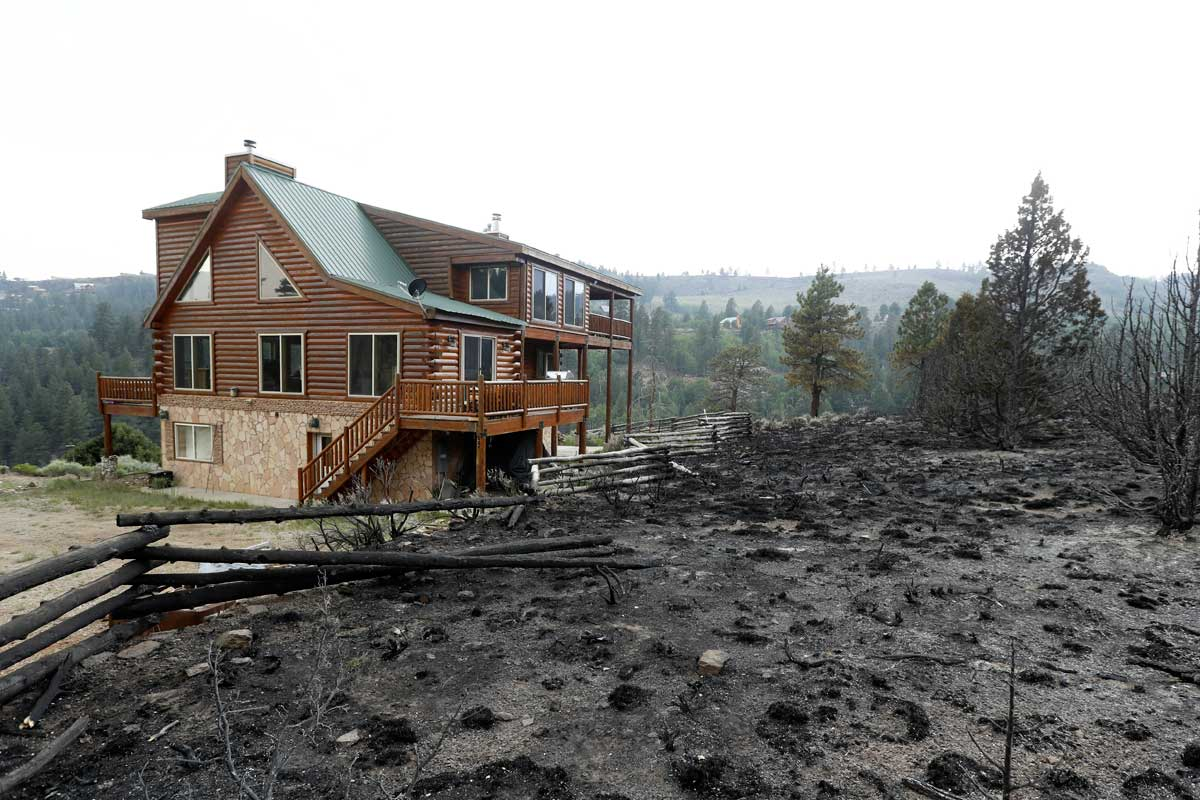 Smart landscaping strategies saved this Utah log home from the wildfire that came within inches of it.