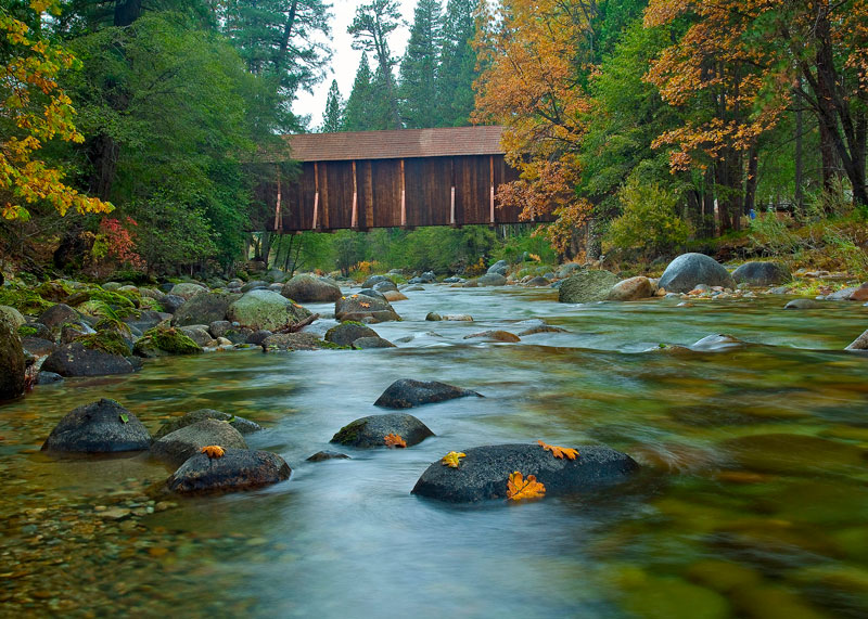 Copy-of-Robbins_Wawona-Covered-Bridge_4x6_8542_2019-09-06_12-10