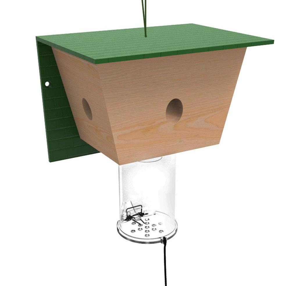 best bee brothers carpenter bee trap