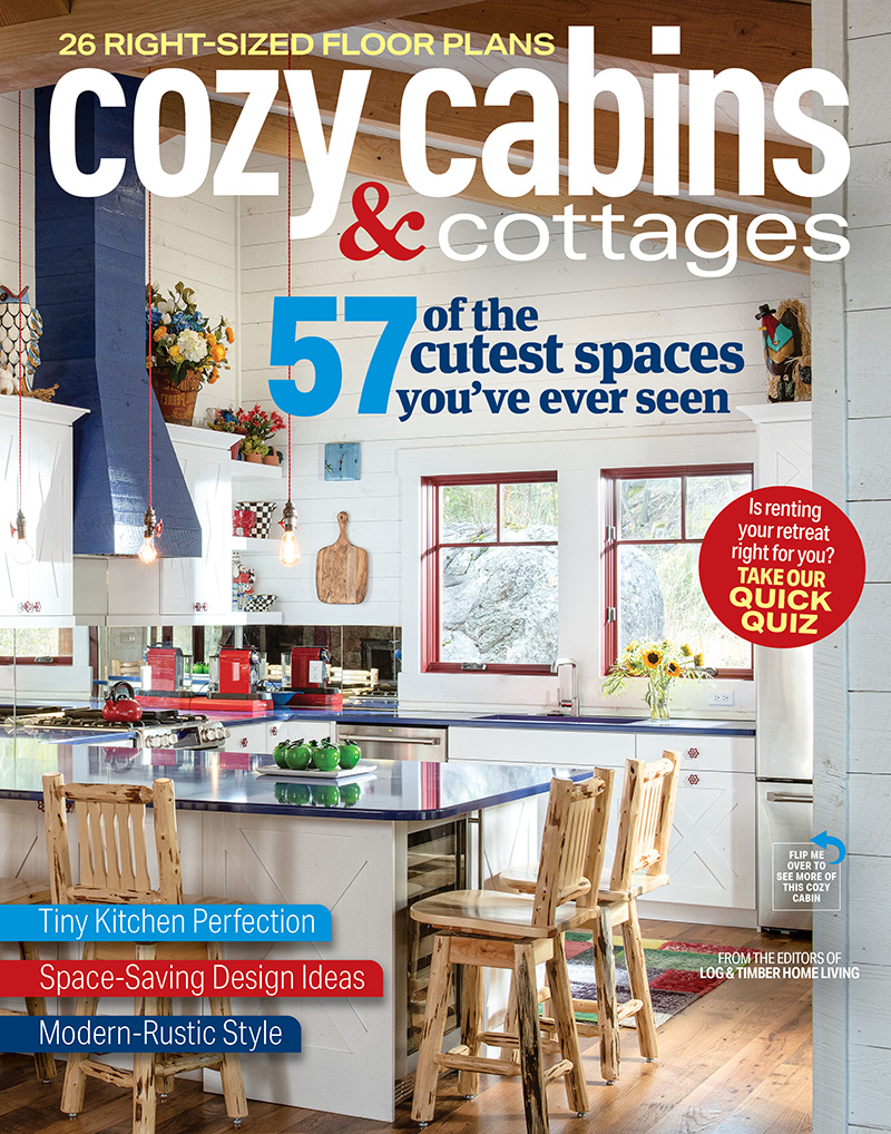 cozy cabins & cottages 2021 cover