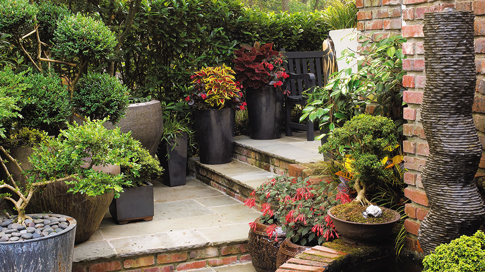 Garden Design: How to Use Plant Containers