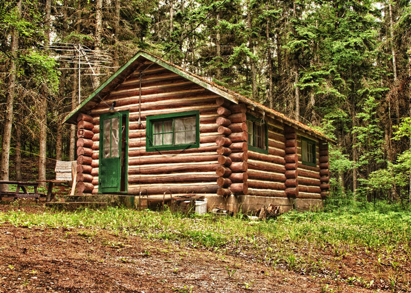 Log Cabin With Green Trim in Forest