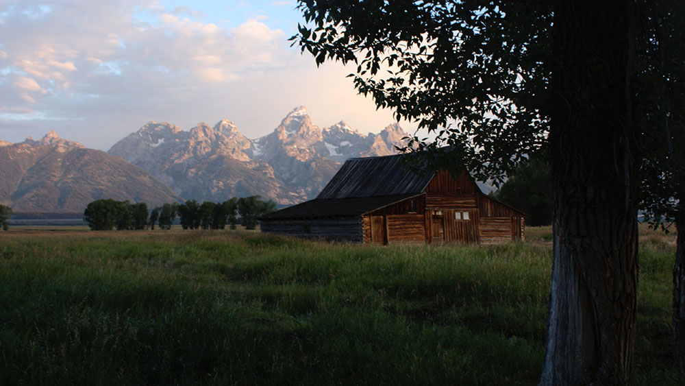 Rugged by Design: Building in Remote Locations | Log home on grass field near mountain
