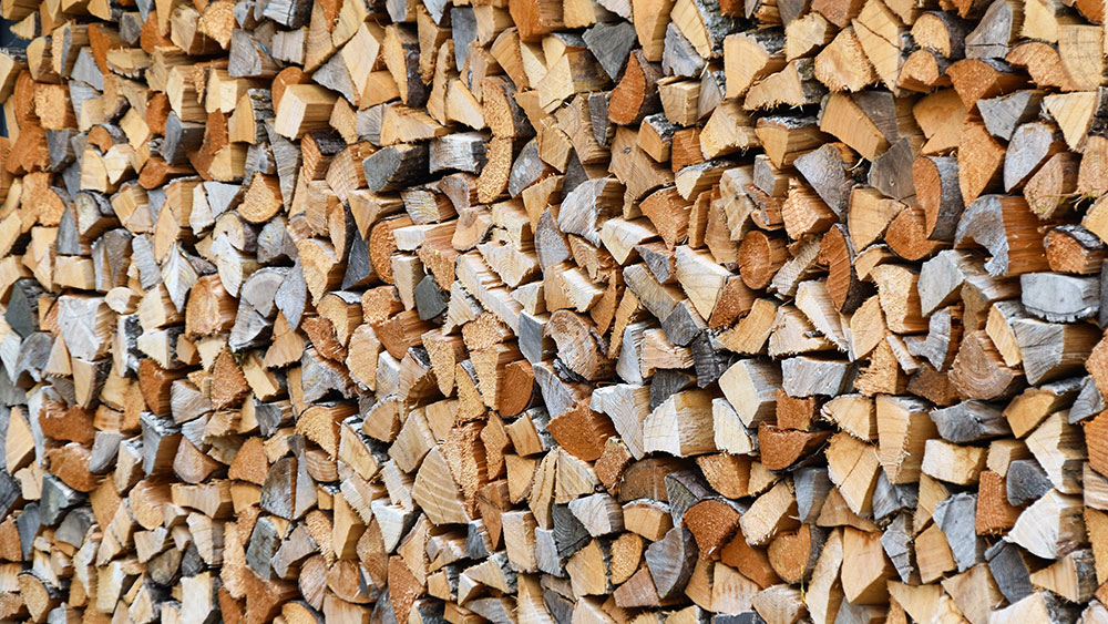 4 Types of Wood Used for Timber Frames