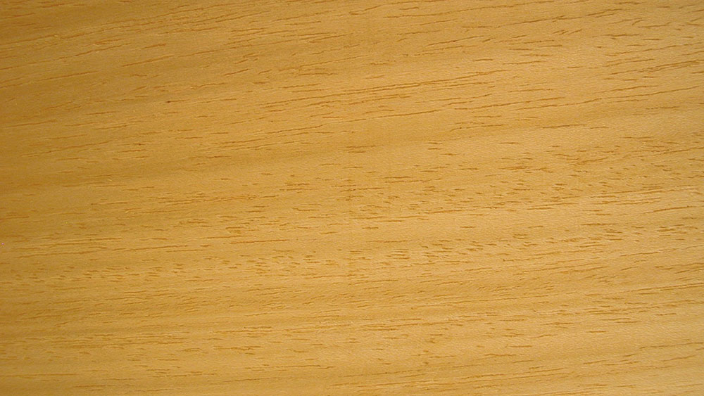 How to Maintain Your Wormy Maple Floor