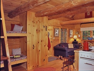 Customize a small log cabin