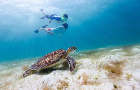 Grand bahama escape