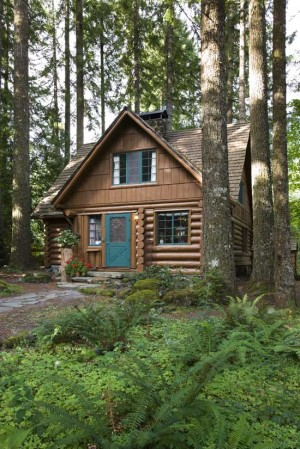 historic_log_cabin_ext2_l-300x449