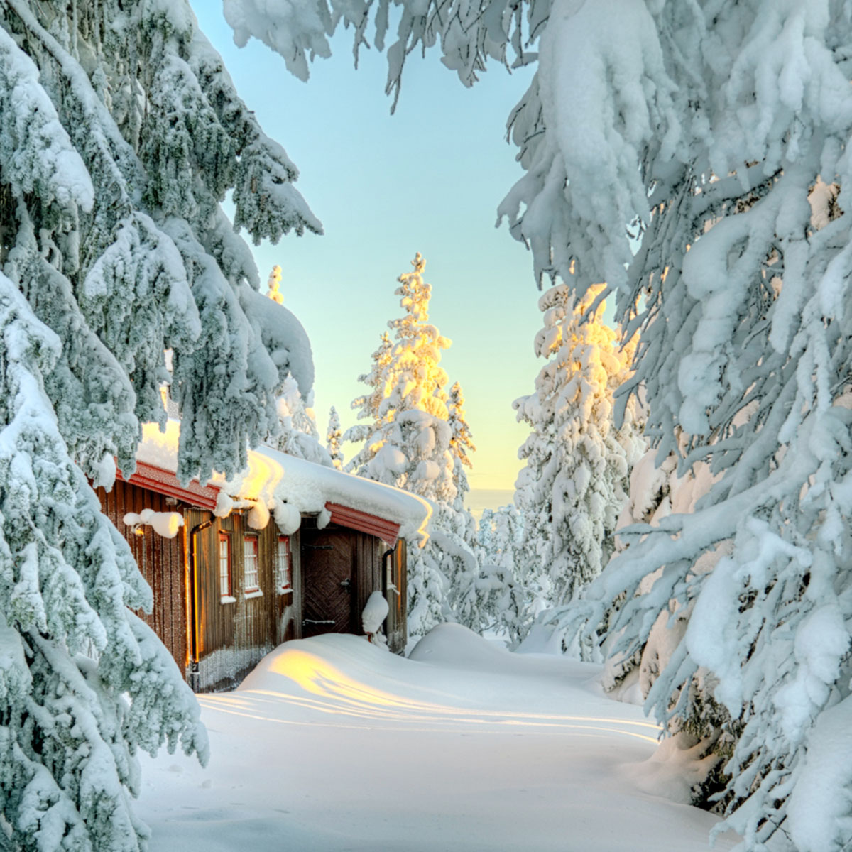 Snow Covered Small Cabin