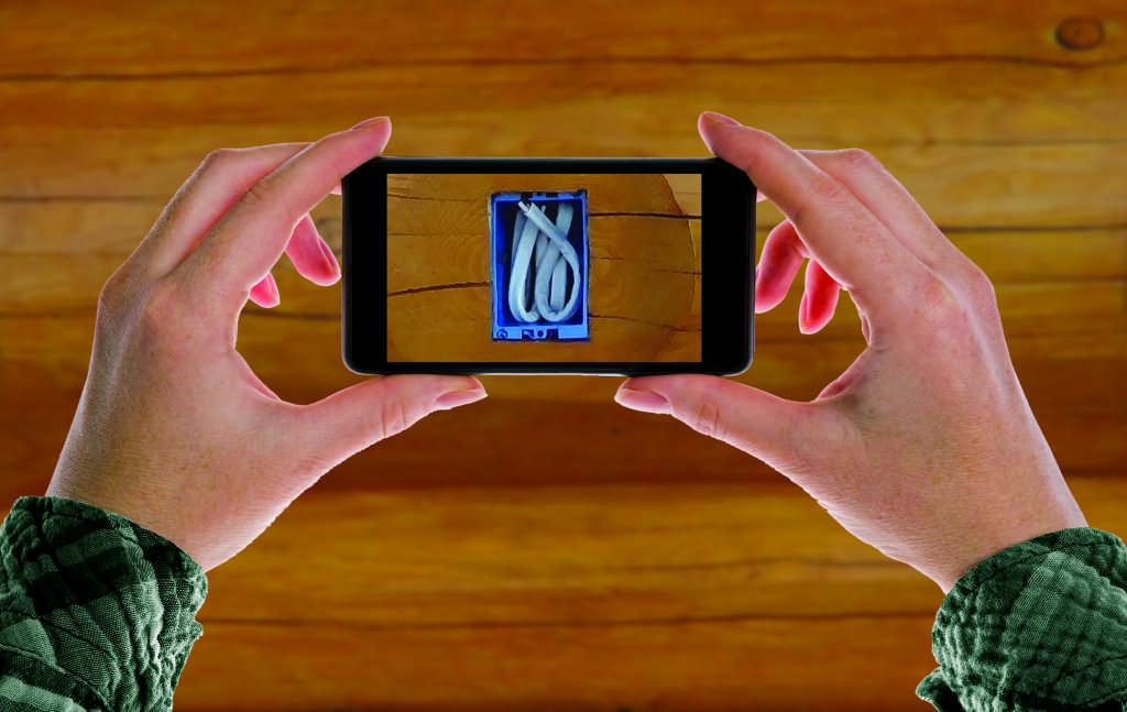 Smartphone in Hands