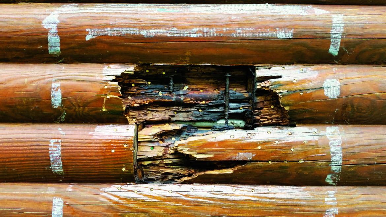 Log Fix Its Diy Or Hire A Pro