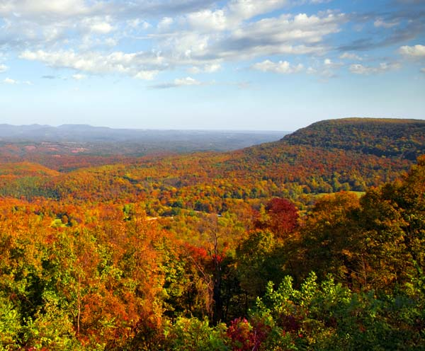 Ozarks Fall Foliage