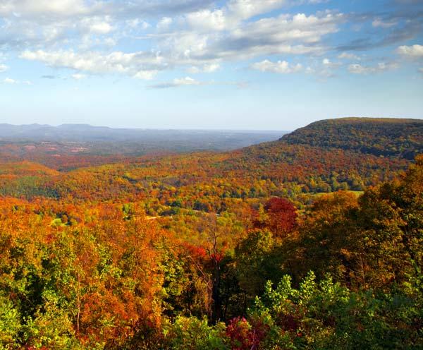 Ozarks Fall Foliage