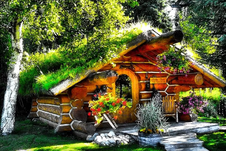 Hobbit cabin tiny house Talkeetna Alaska log cabin wood home