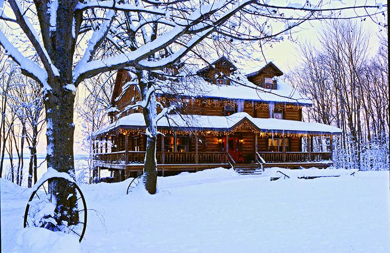 log home exterior snow christmas festive lights