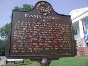 Fannin County, Georgia
