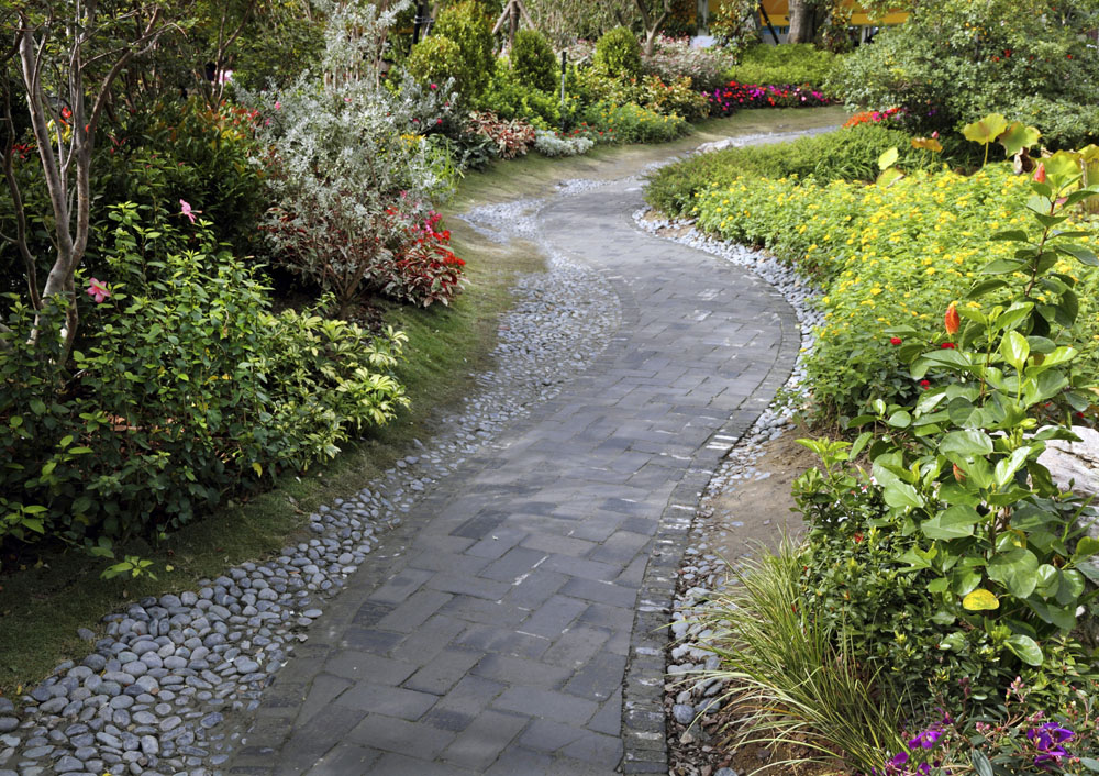 Diy Pathway With Natural Landscaping