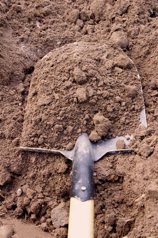 shovel dirt