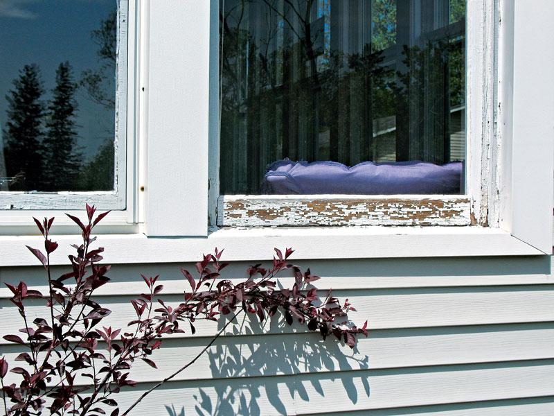 WindowNeedsRepair