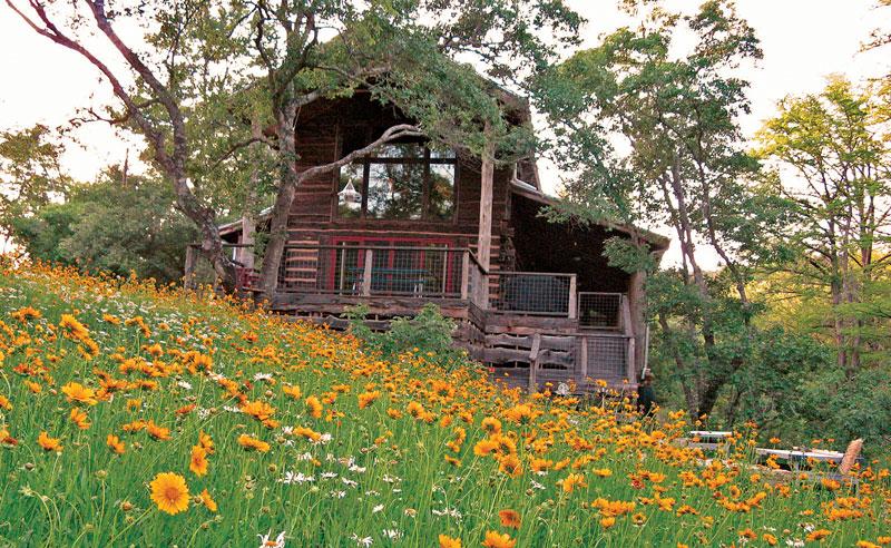 Wildflower-Meadow-May-08_edited-1