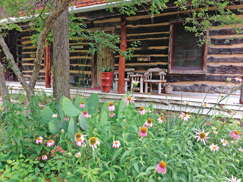 flowers-at-cabin-a