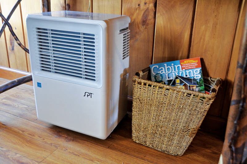 Solutions for Humidity at the Cabin