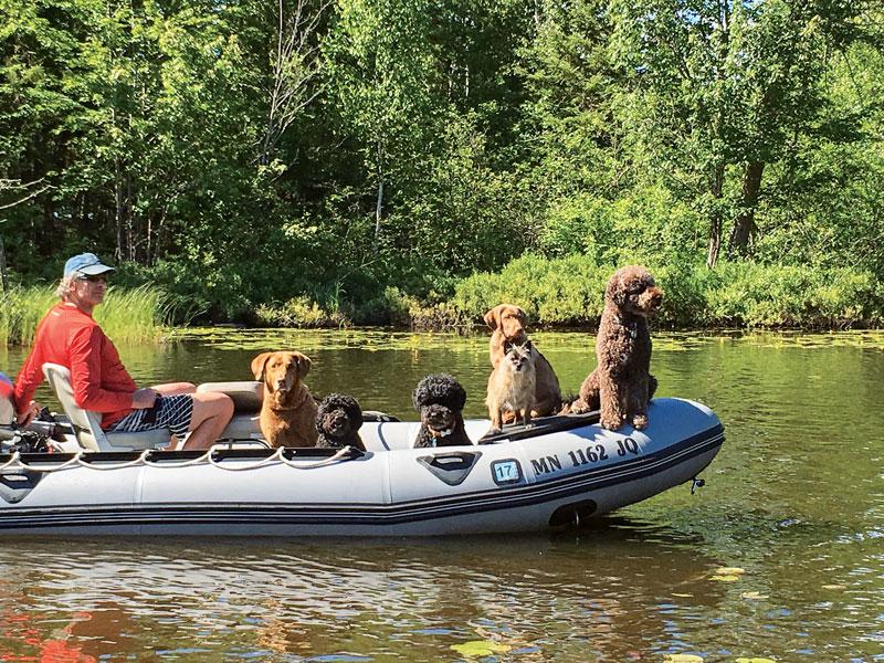 IMG_1319_Zodiac-Full-of-Dogs
