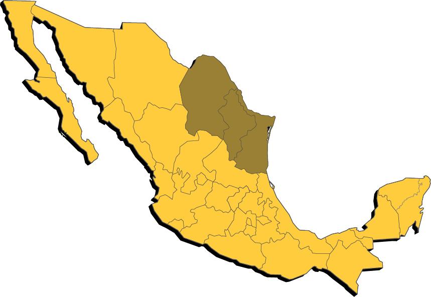 Autobuses Coahuilenses en Mexico