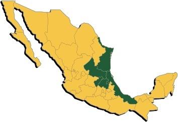 Grupo Vencedor en Mexico