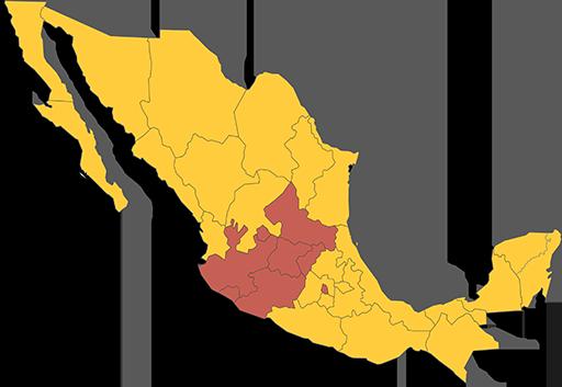 Primera Plus en Mexico