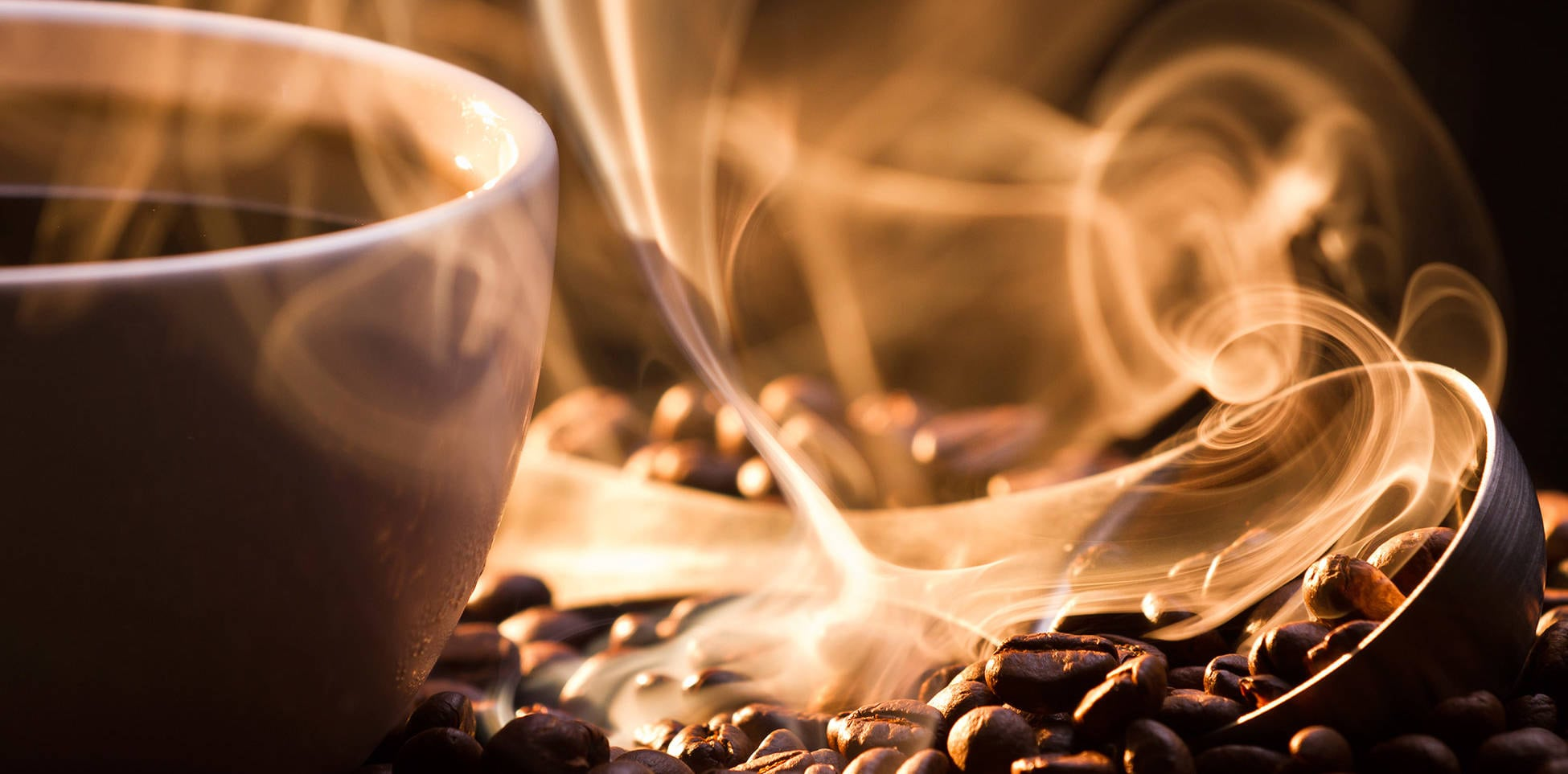catas-de-cafe