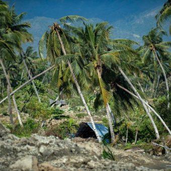 Death toll soars past 800 inIndonesiaearthquake, tsunami